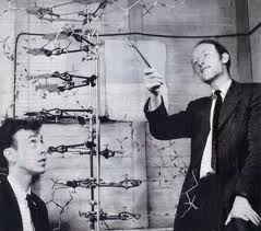 Photograph of WATSON & CRICK ©